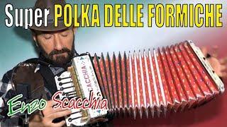 Super Polka Delle Formiche (occhio Alla Seconda Parte) Enzo Scacchia Campione Del Mondo Di Organetto