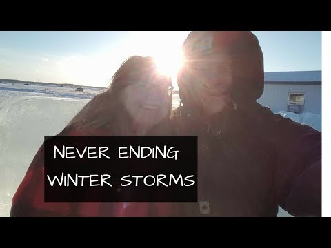 Never Ending Winter Storms | Family with Cats and Dogs Have Cabin Fever