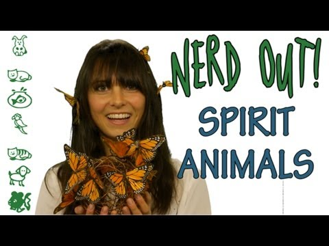 HOW TO PICK YOUR SPIRIT ANIMAL - NERD OUT