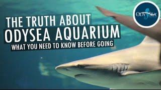THE TRUTH ABOUT ODYSEA AQUARIUM | FULL TOUR IN HD