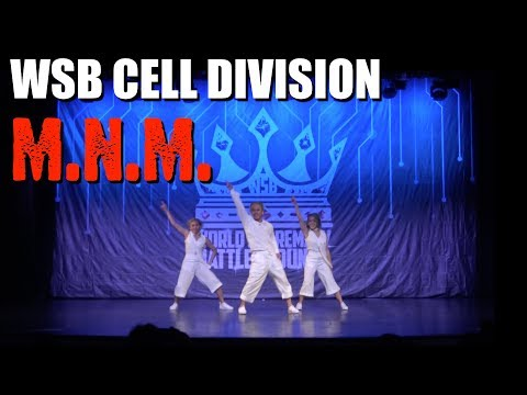 M.N.M. (Philippines) | WSB Cell Division | Silver Medallist #WSB2k17