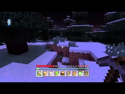Minecraft#2 gosfordvipers point of view