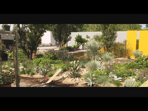 WATCH: Take a sneak peek at all the hot trends in gardens with our exclusive first look inside Bl...