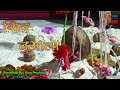 शिव नुआला   Shiv Nuala Live   Live Nuala 2019   Part - 1