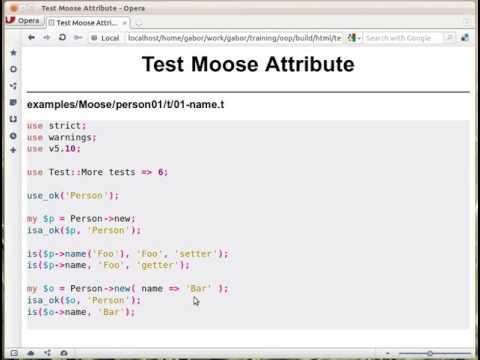 Moose: test setter getter