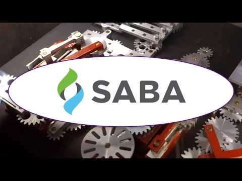 Saba Meeting Accessibility Evaluation and Testing 2018
