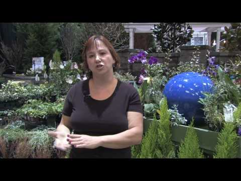 How to Grow Plants & Flowers : How to Make a Deep-Freeze Root Cellar