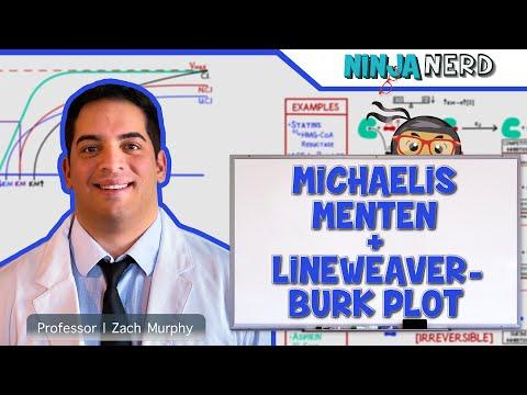 Biochemistry | Michaelis Menten & Lineweaver-Burk Plot