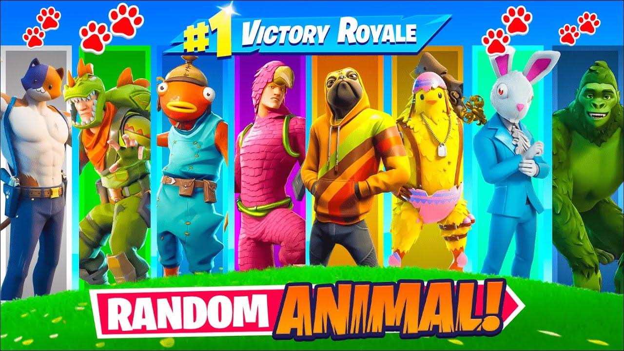 The *RANDOM* ANIMAL Challenge!