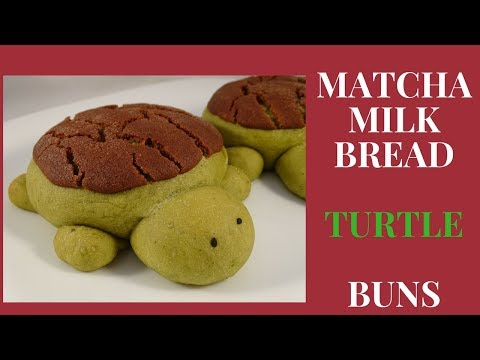 Matcha Milk Bread Turtle Buns