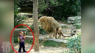 10 SCARY Times Animals Escaped Zoos!