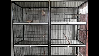 My New Spot Welding Cages | Birds Cages Details Video Urdu/Hindi