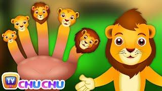 Finger Family Lion   ChuChu TV Animal Finger Family Songs & Nursery Rhymes For Children