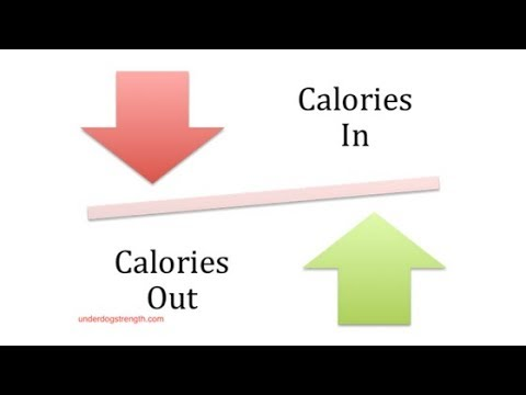 Reverse Dieting After Weight Loss - Is it Necessary?