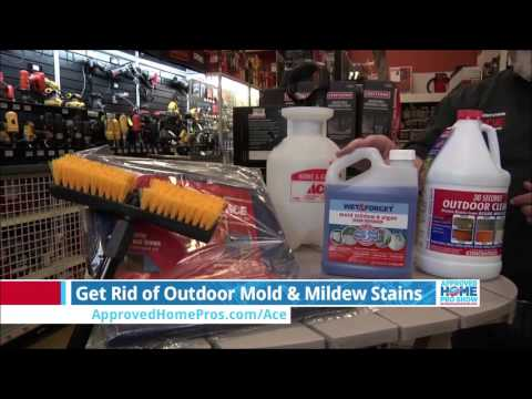 How To Get Rid of Outdoor Mold And Mildew Stains - The Approved Home Pro Show