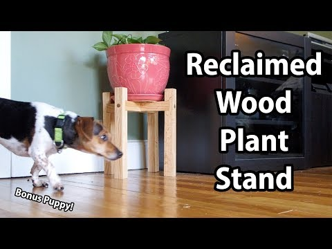 Build: A Reclaimed Wood Plant Stand