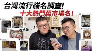 【台灣流行貓名調查!十大熱門菜市場名!】志銘與狸貓