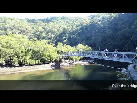 Wahroonga to Mt Colah bush walk