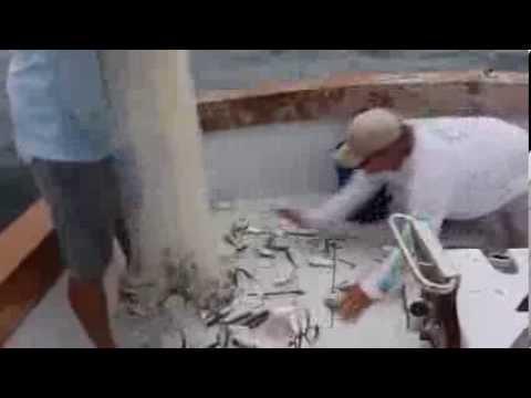 Catching pilchards | Islamorada & Florida Keys Fishing Trips & Charters