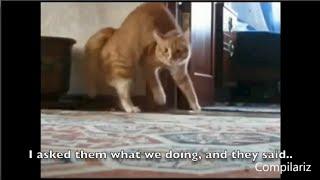 Redfoo - Juicy Wiggle [Lyric Video - Funny!]