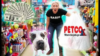 Buying My Rescued Dog EVERYTHING She Touches!