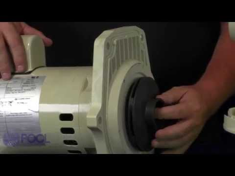 How to Replace the Motor on Your Whisperflo