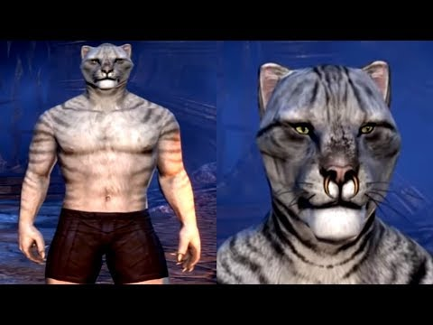 Elder Scrolls Online Character Creation - Khajiit (In Depth ESO Character Customization Review)