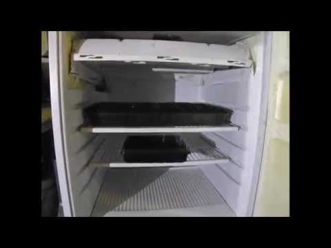 Put Lights In Your Old Fridge For Starting Seeds