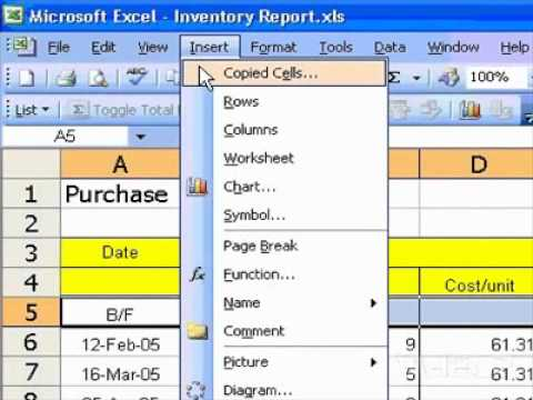 Microsoft Office Excel 2003 Insert new blank cells