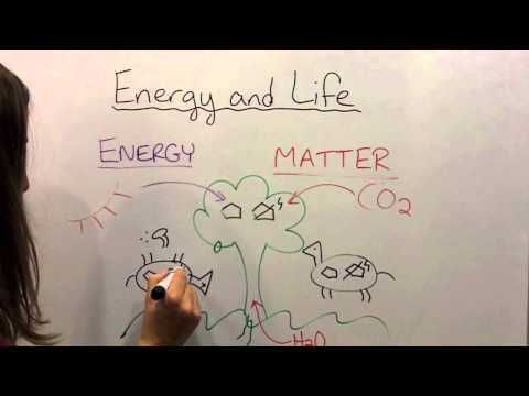 Energy and Life!