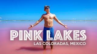 LAS COLORADAS PINK LAKE - Mexico