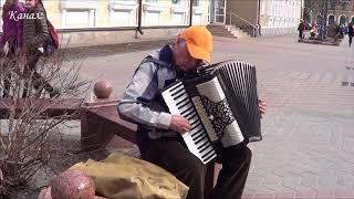 АХ, ЭТИ ЧЕРНЫЕ ГЛАЗА! Танго от дедушки Вити! Brest! Music!