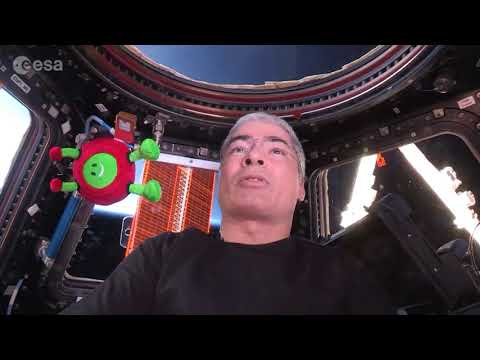 Astronaut Paxi on the ISS Gets a View of Earth