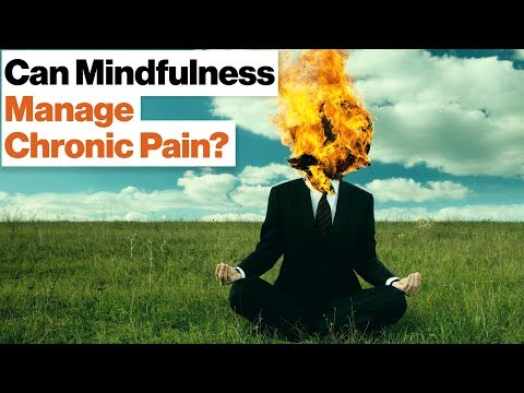 How Meditation Can Manage Chronic Pain and Stress | Daniel Goleman