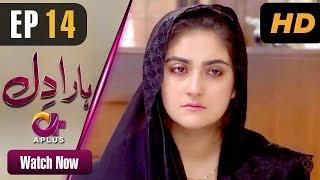 Haara Dil - Episode 14   Aplus Dramas   Danish Taimoor, Hiba Bukhari   Pakistani Drama