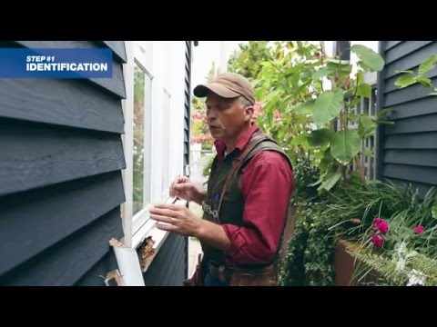 How to Repair Decayed Window Trim