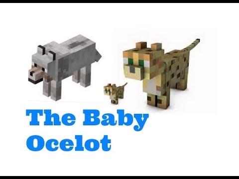 Minecraft: The Baby Ocelot