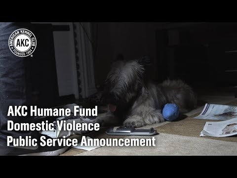 AKC Humane Fund Domestic Violence PSA 1
