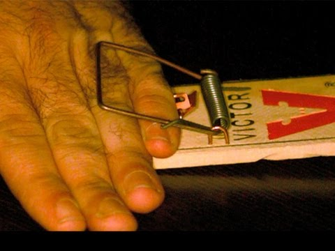 Slow-Mo Hand in MOUSETRAP! ... And DONGs