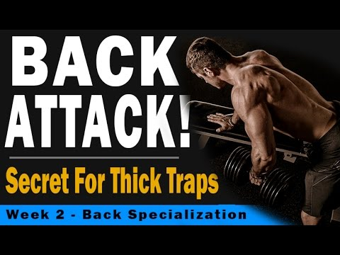 Back Attack Week 2 - Secret For Thick Traps w/ Mitch Muller