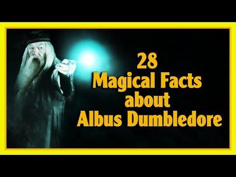 28 Magical Facts About Albus Dumbledore   Harry Potter   Pottermore