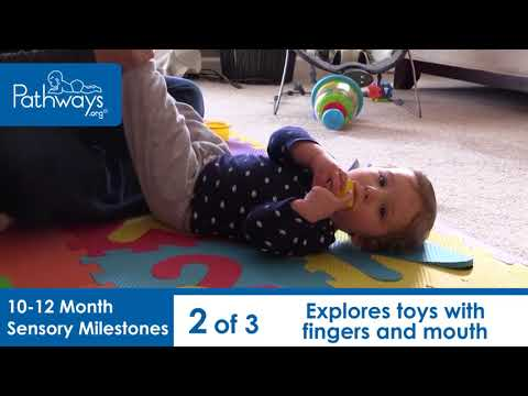 10 to 12 Month Sensory Milestones to Look For