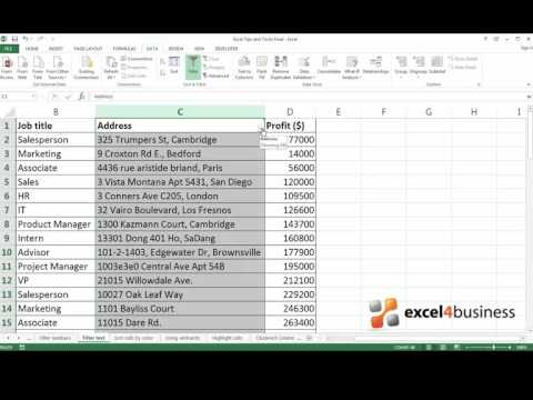 How to Filter Text in Excel 2013