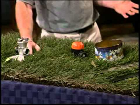 How to Keep Your Lawn Looking Great