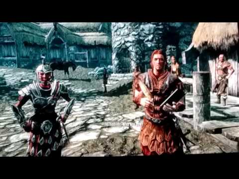 Skyrim Character (BEST PICK IS NORD.)