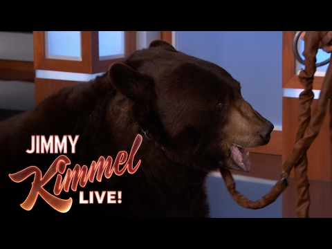 Xxx Mp4 Wild Animals With Dave Salmoni And Rob Lowe 3gp Sex