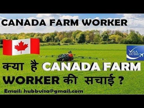 Canada farm worker visa