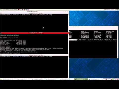 Deploying Oracle databases in Linux containers