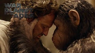 War for the Planet of the Apes   Catch Up Before the End   20th Century Fox