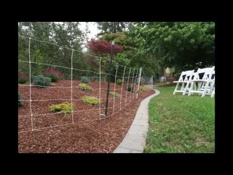 How to Keep Sheep and Dogs out of the Landscaping